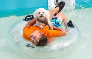 Bark in the Water Park
